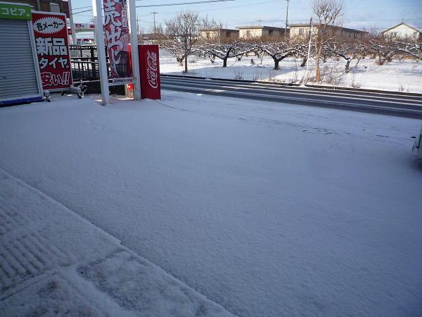 2019 2月10 雪 (1).JPG